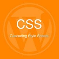 Como Usar CSS no Wordpress